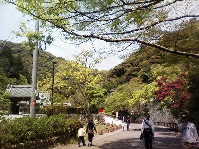 ryuanji2080426.jpg